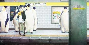 Rating: Safe Score: 30 Tags: animal bird black_hair blue_eyes long_hair original pantyhose penguin phone ponytail sakimori_uta school_uniform train watermark User: FormX