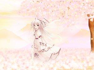 Rating: Safe Score: 23 Tags: dress flowers gray_hair green_eyes kisaragi_sarasa long_hair petals ribbons sorairo_no_organ ueda_ryou vector User: Oyashiro-sama