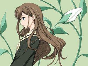 Rating: Safe Score: 10 Tags: flowers green maria-sama_ga_miteru toudou_shimako User: Oyashiro-sama