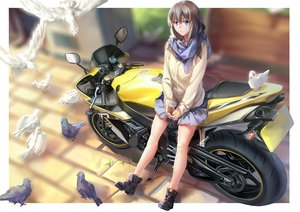 Rating: Safe Score: 131 Tags: animal bird blue_eyes boots brown_hair drink long_hair motorcycle original rff_(3_percent) scarf skirt User: Flandre93