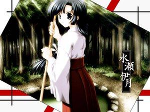 Rating: Safe Score: 2 Tags: japanese_clothes miko suika User: Oyashiro-sama