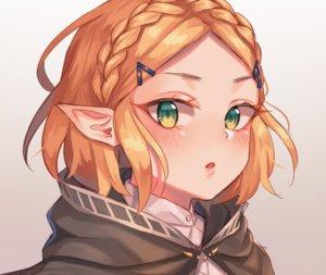 Rating: Safe Score: 78 Tags: blonde_hair blush braids close cropped gradient green_eyes hoodie pointed_ears princess_zelda short_hair sketch the_legend_of_zelda tsukiaki_teriyaki User: otaku_emmy