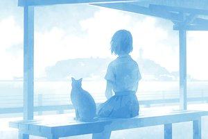 Rating: Safe Score: 70 Tags: animal blue cat namito original seifuku short_hair User: FormX