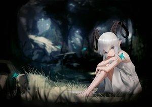 Rating: Safe Score: 77 Tags: barefoot blue_eyes butterfly dark dress forest grass gray_hair hara_shoutarou horns long_hair original pointed_ears summer_dress tree User: otaku_emmy