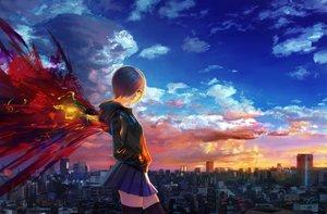 Rating: Safe Score: 266 Tags: blue_hair building city clouds kirishima_touka red_eyes short_hair signed skirt sky sunset tokyo_ghoul wayne_chan wings zettai_ryouiki User: Flandre93