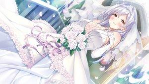 Rating: Safe Score: 85 Tags: blush evelyn_devolugard flowers game_cg gray_hair long_hair maokatsu!_maou_to_yuusha_no_idol_seikatsu petals red_eyes rose tagme_(artist) tiara wedding_attire wonder_fool User: BattlequeenYume