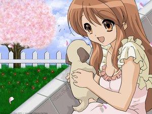 Rating: Safe Score: 8 Tags: animal asahina_mikuru dog flowers petals photoshop spring suzumiya_haruhi_no_yuutsu vector User: Oyashiro-sama