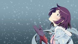 Rating: Safe Score: 54 Tags: bakemonogatari blue_eyes blush gloves monogatari_(series) purple_hair scarf senjougahara_hitagi short_hair snow vector User: RyuZU