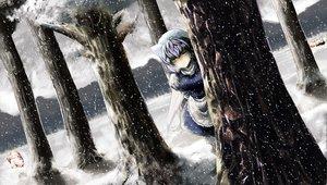 Rating: Safe Score: 60 Tags: aki_minoriko aki_shizuha blue_eyes blue_hair forest hat letty_whiterock lolicept short_hair snow touhou tree User: PAIIS