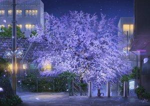 Rating: Safe Score: 100 Tags: animal building cat cherry_blossoms city flowers mirror night niko_p nobody original petals scenic signed tree User: RyuZU