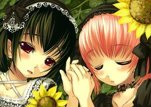 Rating: Safe Score: 26 Tags: askray flowers goth-loli lolita_fashion moe_(bosshi) sunflower yu_(bosshi) User: Oyashiro-sama