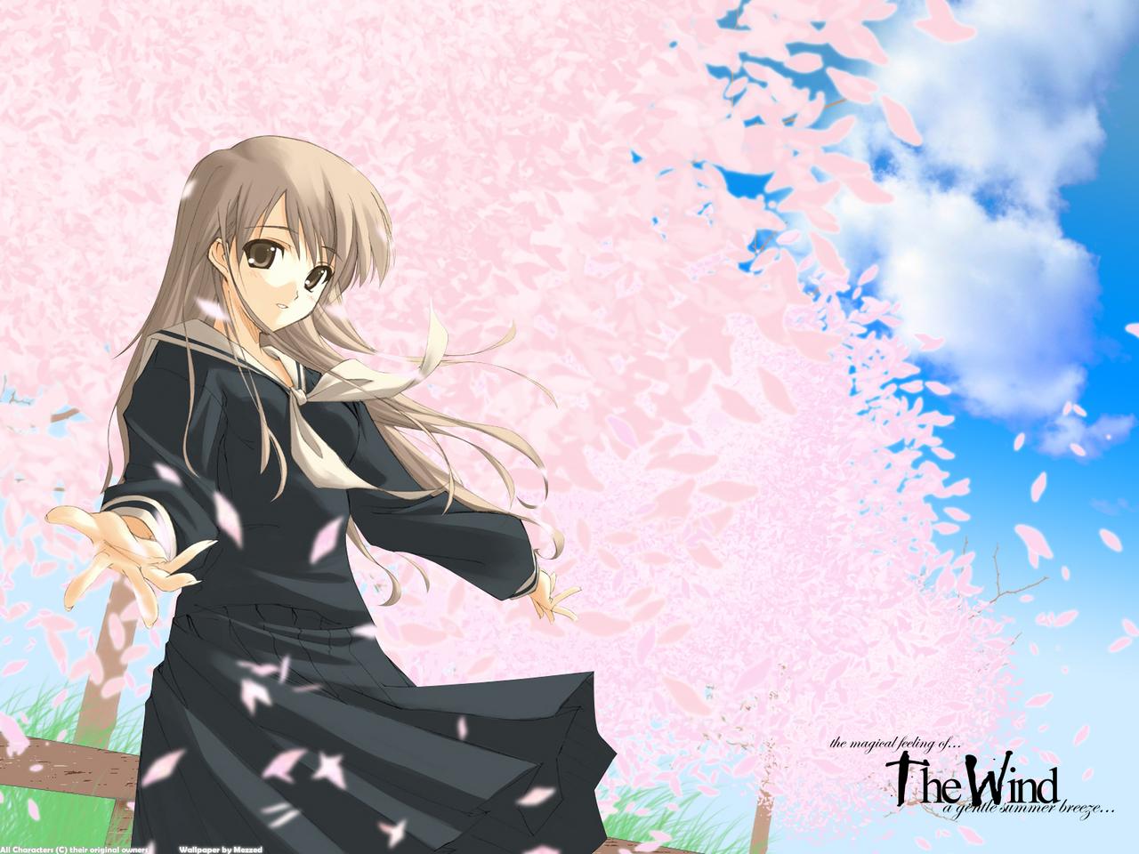 maria-sama_ga_miteru petals pink toudou_shimako