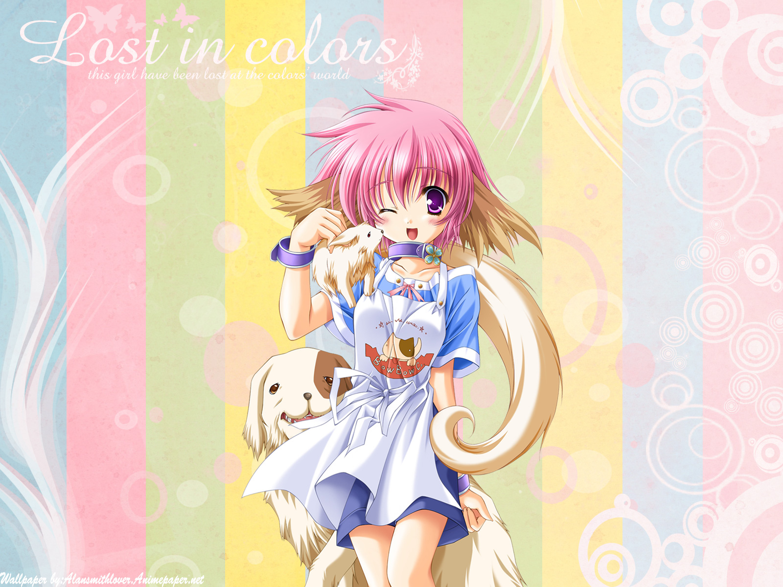 animal animal_ears apron blush clover_(company) collar dog doggirl moekibara_fumitake percy pink_hair platinum_wind_hoshi_no_shi_ga_kikoetara purple_eyes short_hair shorts signed wink