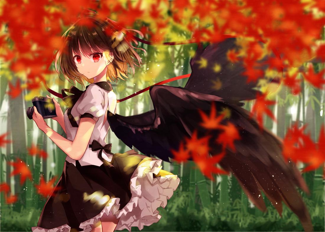 autumn camera forest kisaragi_yuri leaves shameimaru_aya touhou tree wings