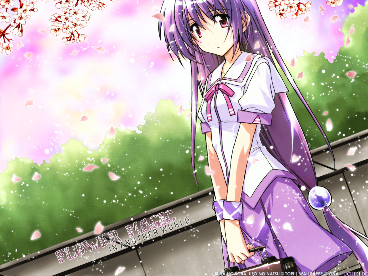 cherry_blossoms flowers iriya_kana iriya_no_sora_ufo_no_natsu long_hair petals purple_hair red_eyes school_uniform watermark