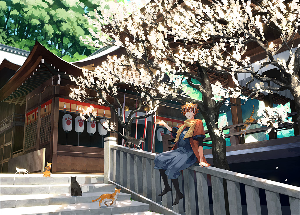 00111 all_male animal animal_ears boots cat jpeg_artifacts male orange_eyes orange_hair original petals scarf short_hair shrine stairs tree