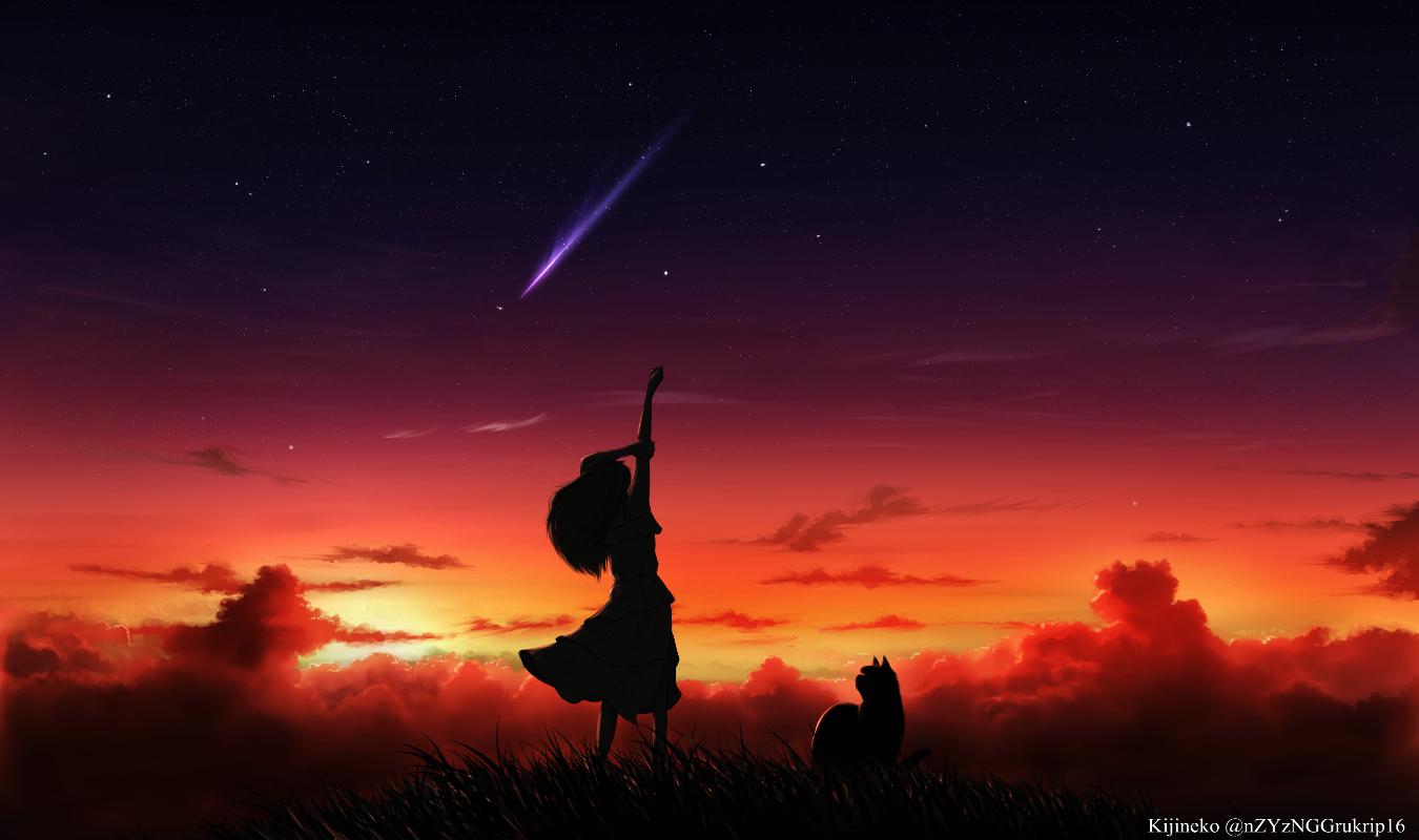animal cat clouds grass kijineko long_hair original scenic silhouette sky stars sunset watermark