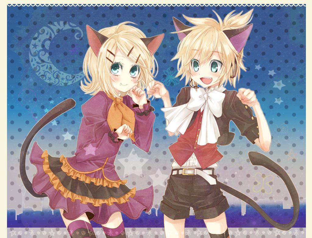 amashiro natsuki animal ears aqua eyes blush catgirl