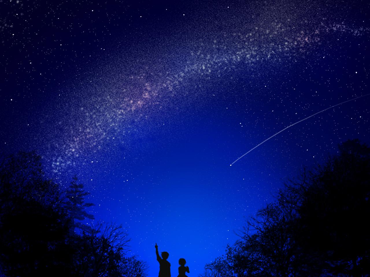 dark kaito male meiko night silhouette sky stars tree vocaloid