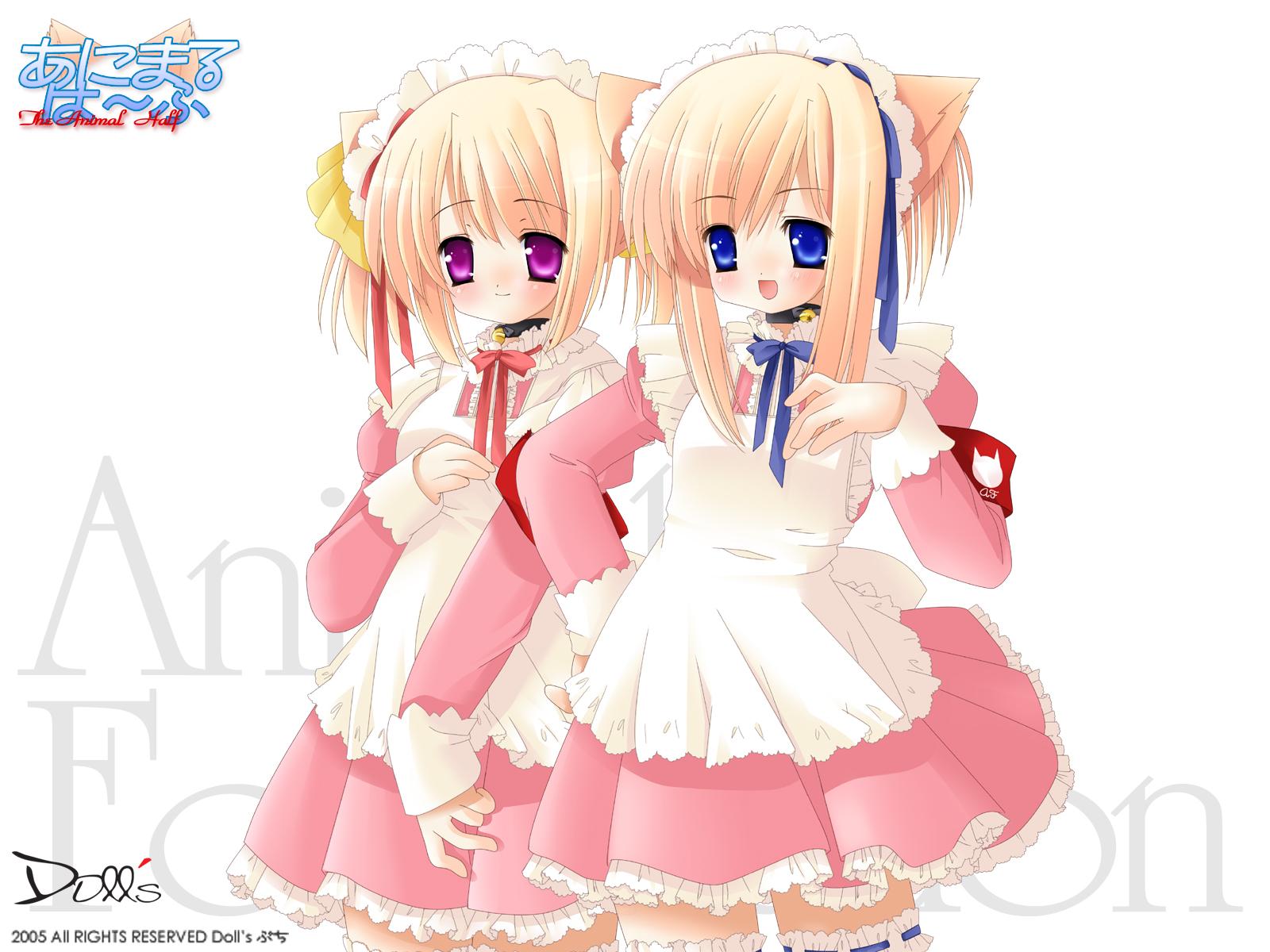 animal_ears bell blue_eyes catgirl collar headdress maid pink_eyes ribbons thighhighs white