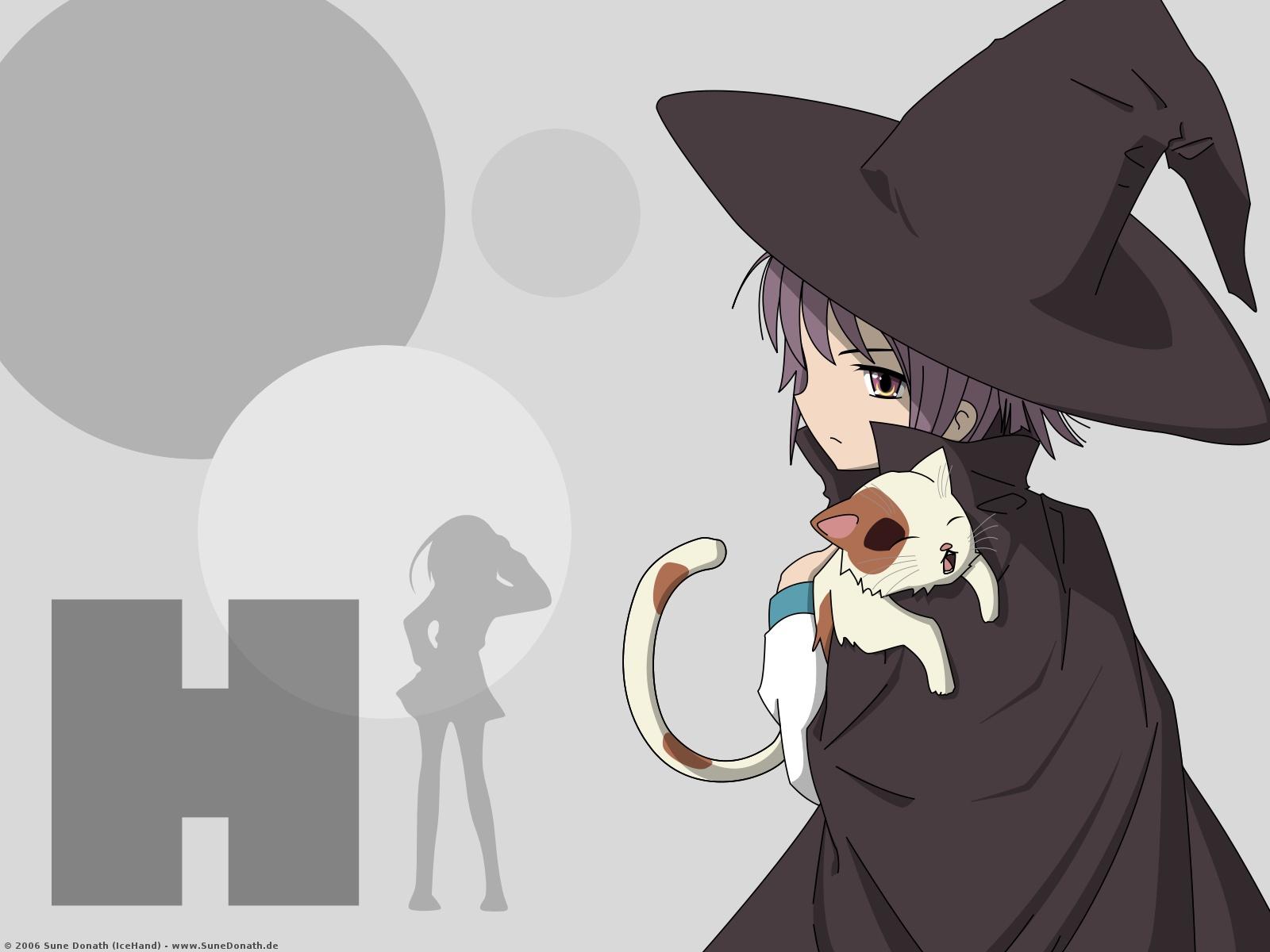 animal cat nagato_yuki shamisen suzumiya_haruhi suzumiya_haruhi_no_yuutsu witch