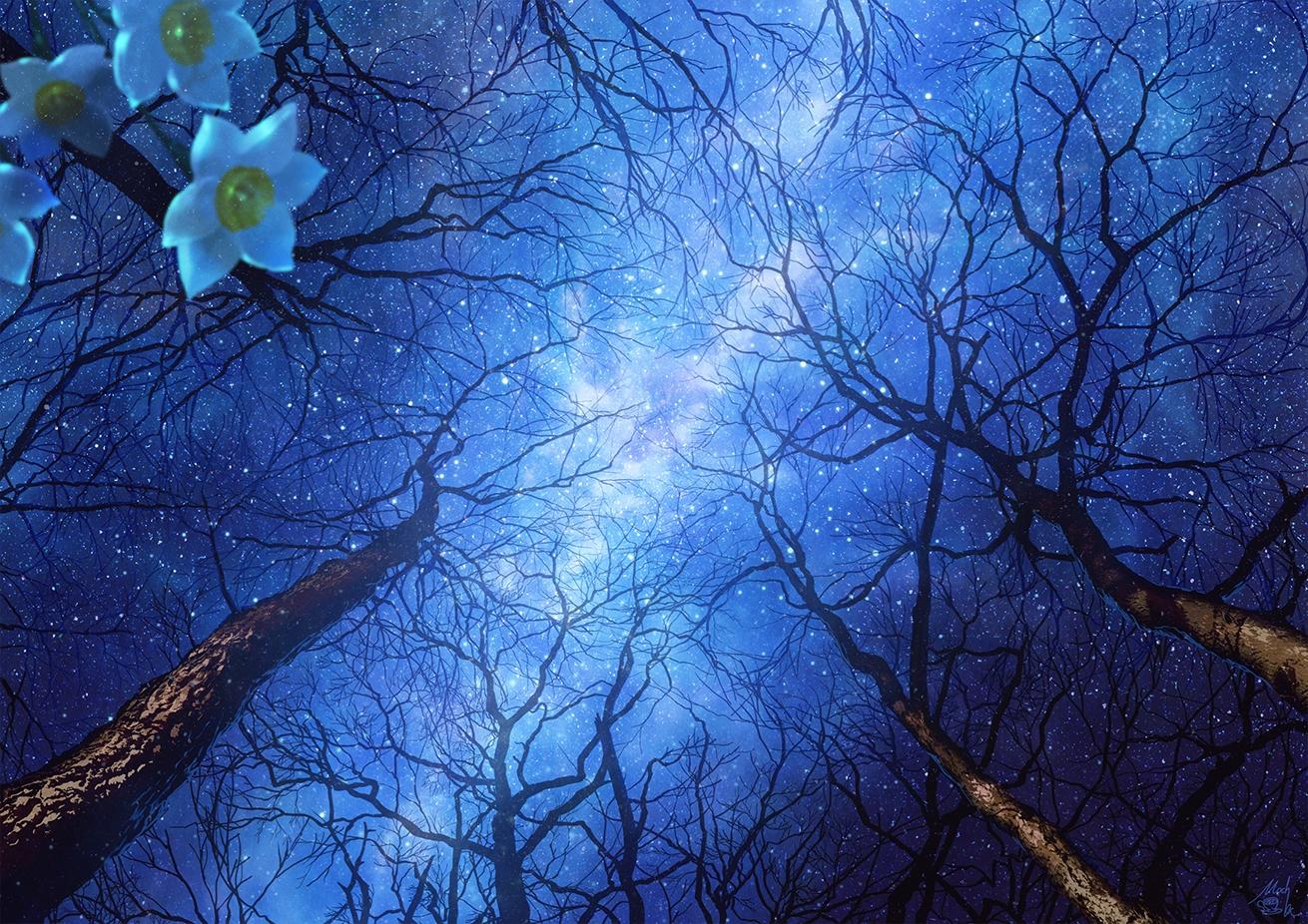 clouds flowers mocha_(cotton) night original signed sky stars tree