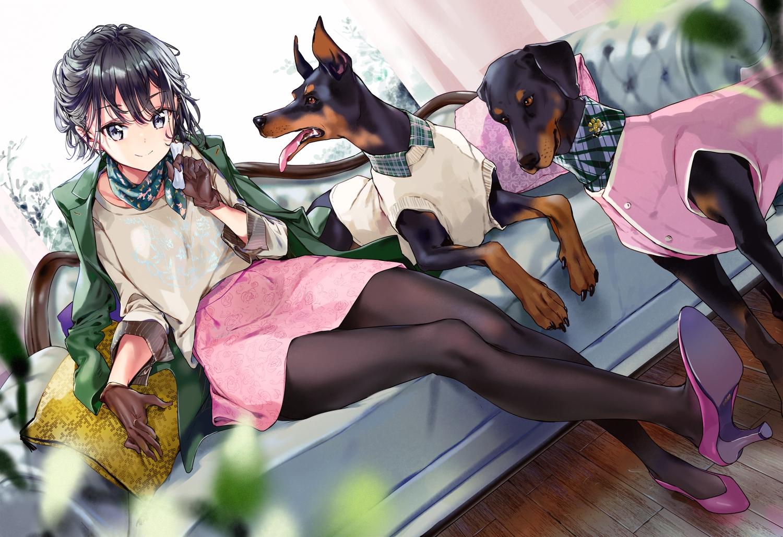 adagaki_aki animal black_hair couch dog gloves masamune-kun_no_revenge pantyhose short_hair skirt tiv