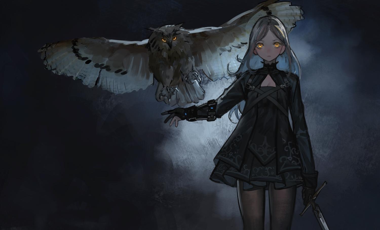 animal bird dark dress gloves gothic jun_(5455454541) long_hair orange_eyes original owl pantyhose sword weapon