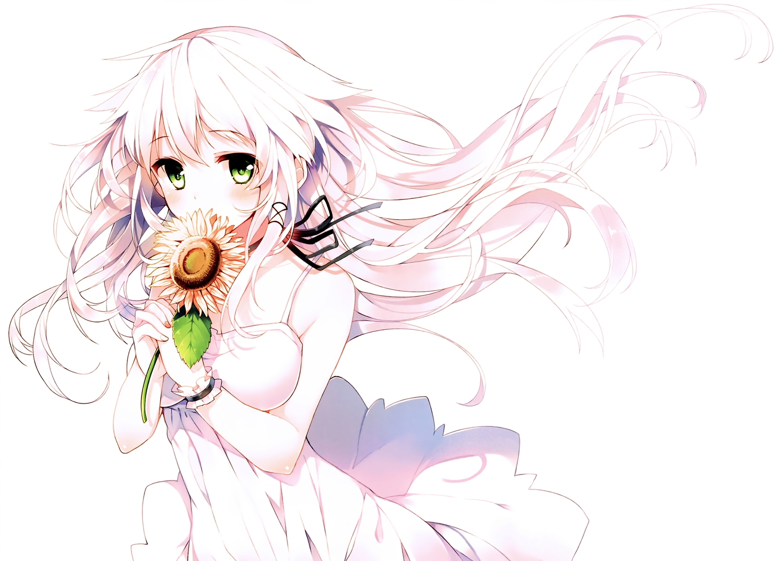 anceril_sacred dress flowers green_eyes long_hair mishima_kurone original scan summer_dress sunflower white white_hair wristwear