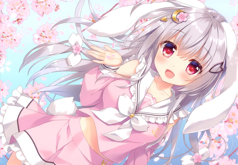 ameto_yuki animal_ears bunny_ears bunnygirl cherry_blossoms flowers gray_hair long_hair original red_eyes scan tail